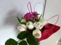 biele_tulipany